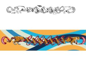 design van een ski deck